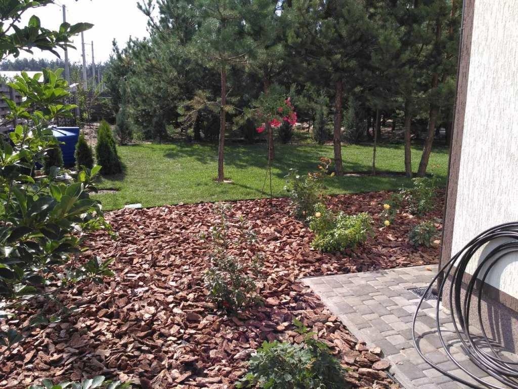 с. Лишня, озеленение и благоустройство (6)