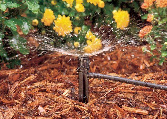 Как выбрать дождеватель для поливочной системы