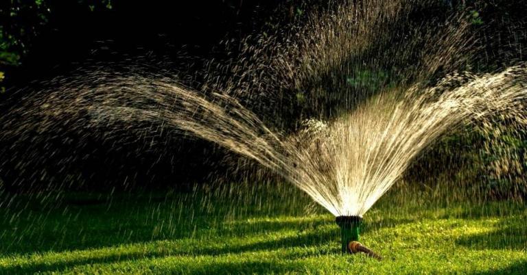 Методика дождевания