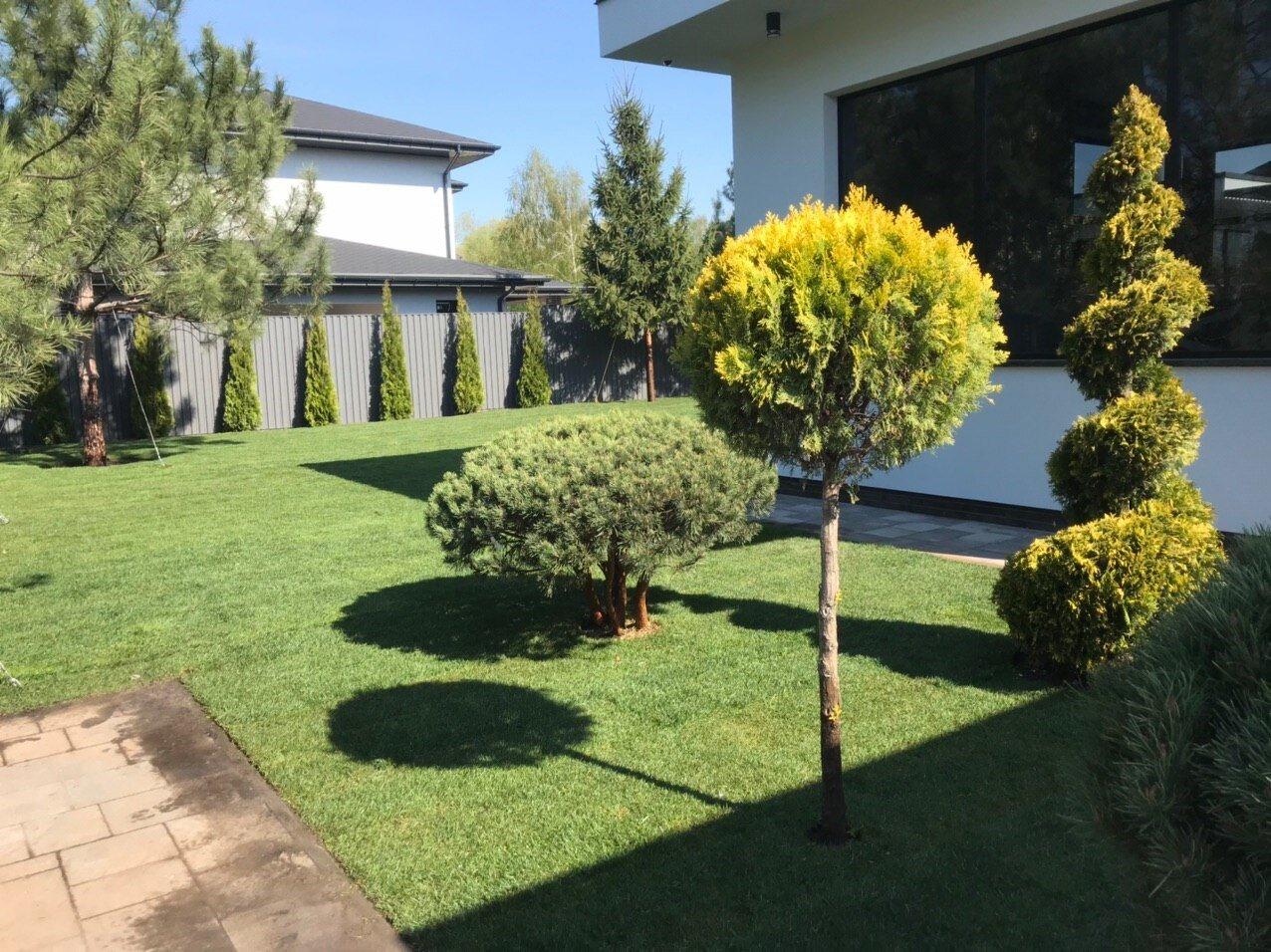 Озеленение (Галерея)